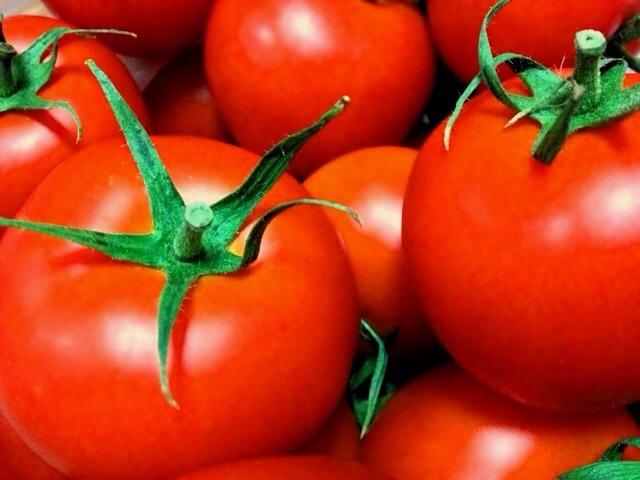 リコピンの多いトマト